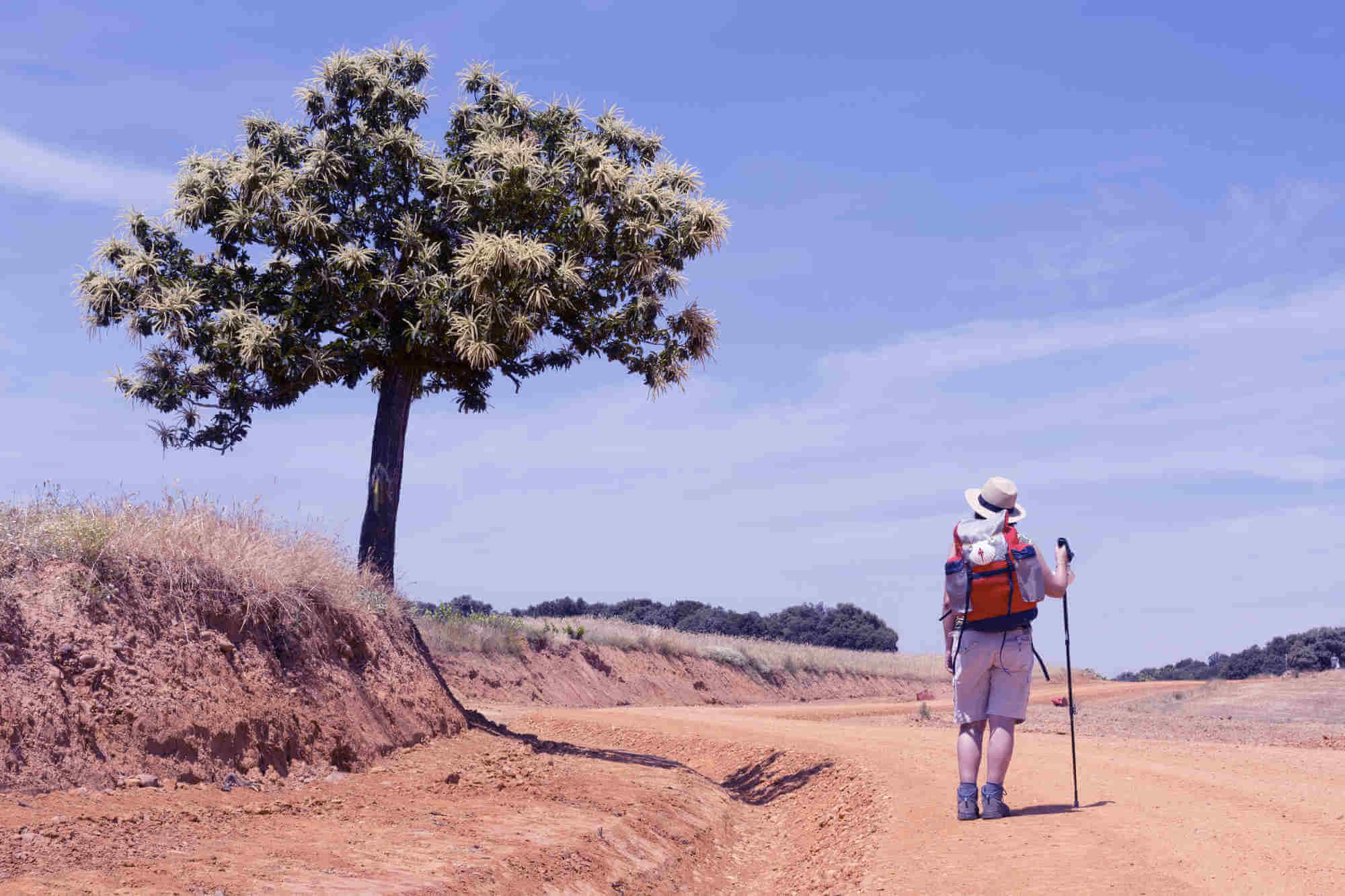 Compostelle : comment préparer cette randonnée pas comme les autres ?