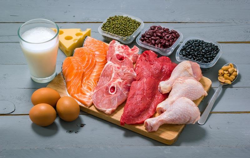 chrononution 4 repas par jour et des proteines