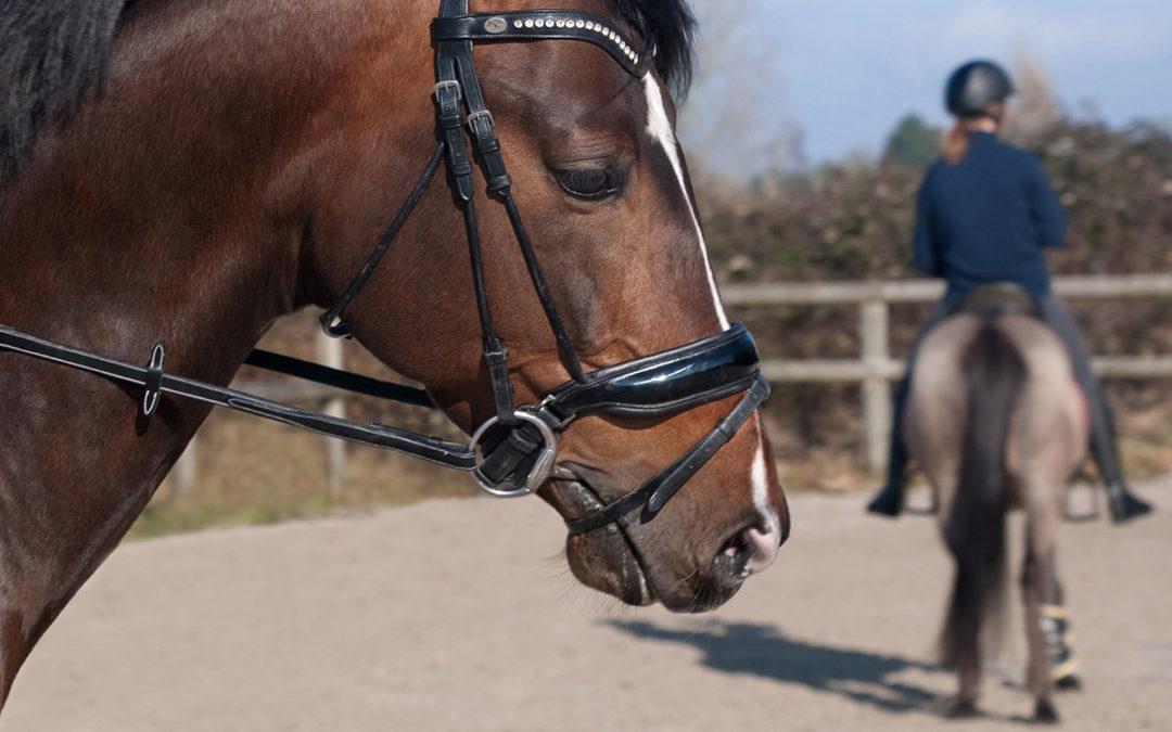 Les bienfaits et les blessures les plus courantes en équitation